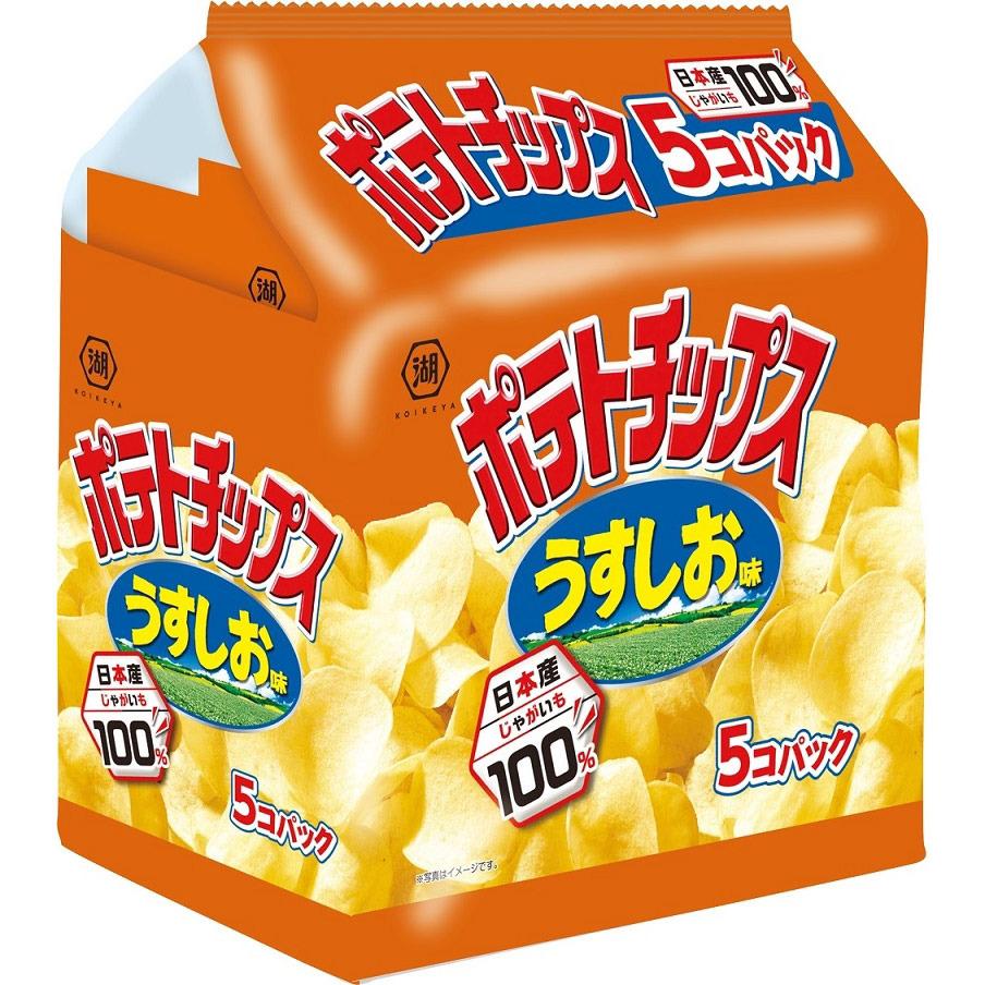 出色 ポテトチップス うすしお味 5個パック 本物 お菓子