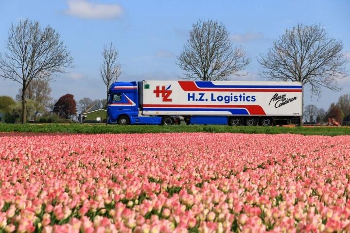直営ストア ミニチュア模型ミニカー 予約 2021年2月以降発売予定HZ Logistics 毎日激安特売で 営業中です DAF XF Euro 6 Super Space Cab met 模型ミニカー 建設機械 50 TEKNO 1 koeloplegger はたらく車 重機 トラック