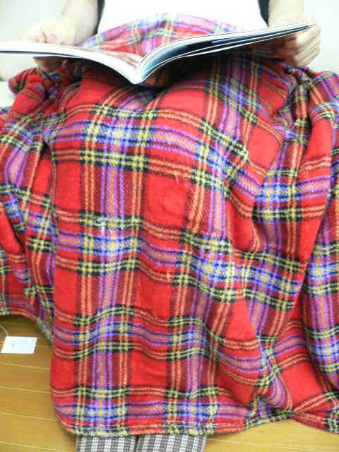 商店 膝に掛けたり肩から羽織ったり 寒い季節に大活躍のふかふかブランケット 冬のあったか タータンフリースブランケット レッド S50 プレゼント S1912 オープニング 大放出セール _P2 HLS_DU