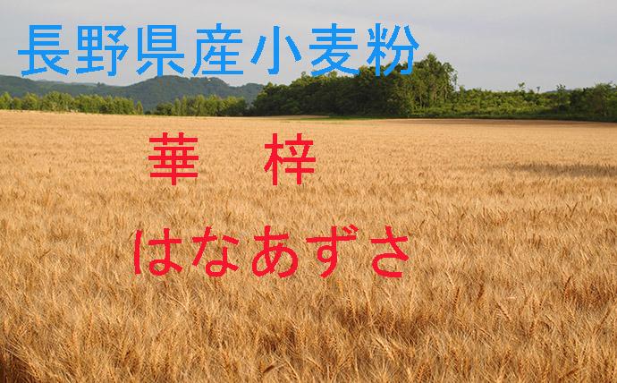 長野県産小麦であるハナマンテン 2020春夏新作 ゆめかおりを原料にしています 強靭で安定したグルテンの為 製パン適性が高く 風味のあるもっちりとした食感が得られます 柄木田製粉 加工なし 風味のあるもっちりとした食感 華梓2.5kg×2袋 アウトレット