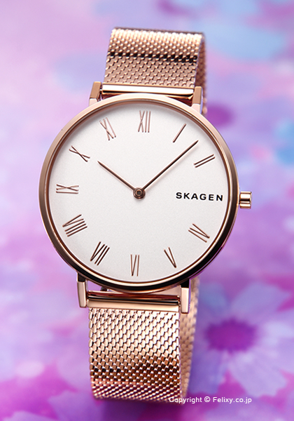 スカーゲン SKAGEN 腕時計 Hald SKW2714 【あす楽】