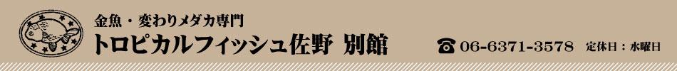 トロピカルフィッシュ佐野:金魚の販売