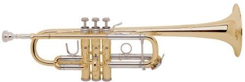 V.Bach C180L239/25C GL 【C トランペット】