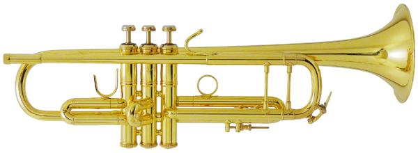 V.Bach 180ML37/25 GP 【Bb トランペット】