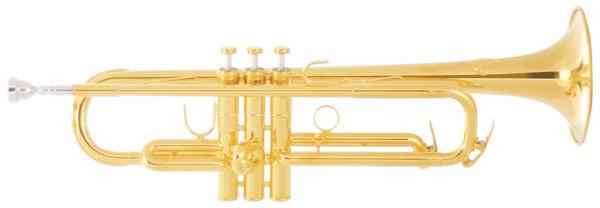 Brass Sound Creation Avance GP 【Bb トランペット 】