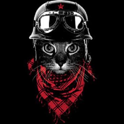 キャット柄スウェットトレーナー(No119)ヘルメット/ネコ/猫