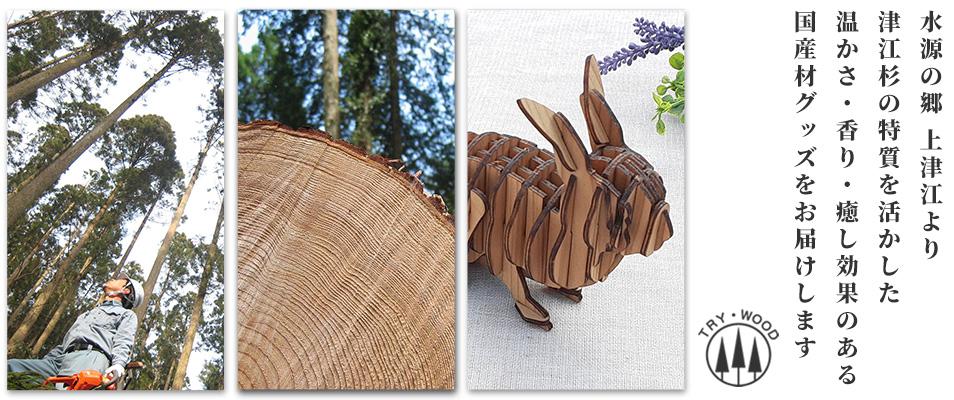 トライウッド EcoShop:大分県の林業会社が、本物の国産材製品を製造販売しています。