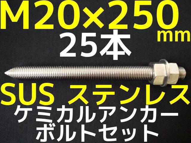 ケミカル アンカーボルト セット ステンレス M20×250mm 25本 寸切ボルト1本 ナット2個 ワッシャー1個 Vカット 両面カット SUS304 送料無料(九州/北海道/沖縄/離島を除く)【取寄せ品】