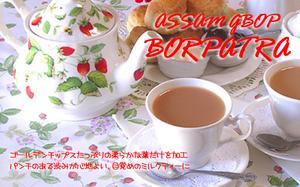 コクのあるアッサムティーを細かくして さらにパンチのある渋みを引き出しました 目覚めのミルクティーに 紅茶 ランキング総合1位 メール便:送料無料 インド紅茶:2021年アッサムセカンドフラッシュ 再再販 50g ボルパトラ茶園クオリティーGBOP