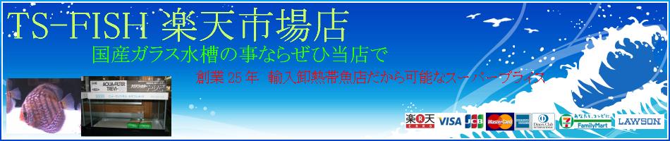 TS-FISH 楽天市場店:アクアリウム商品をとりあつかっております。