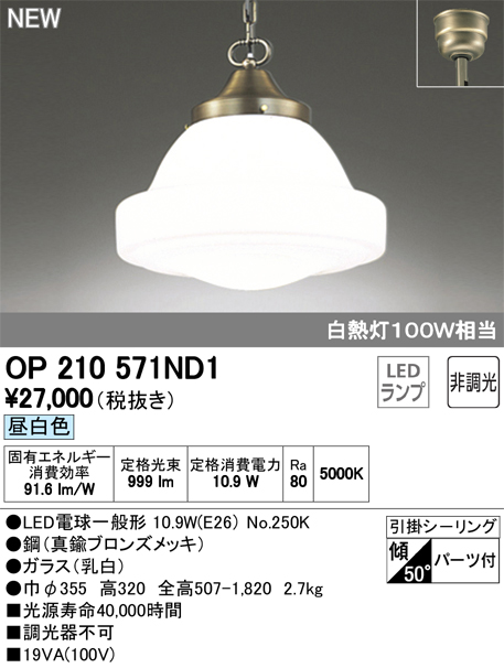 OP210571ND1 オーデリック 照明器具 LEDペンダントライト 昼白色 非調光 白熱灯100W相当
