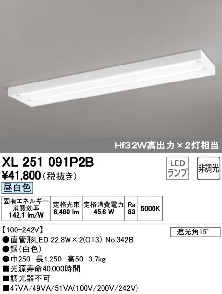 XL251091P2BLED-TUBE 高効率直管形LEDランプ専用ベースライト直付型 40形 下面開放型 2灯用 3400lmタイプ非調光 昼白色 Hf32W高出力相当オーデリック 施設照明 商業施設 天井照明
