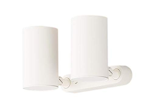 LGB84872LE1 パナソニック Panasonic 照明器具 LEDスポットライト 電球色 美ルック 直付タイプ 2灯 拡散タイプ 白熱電球100形2灯器具相当 LGB84872LE1
