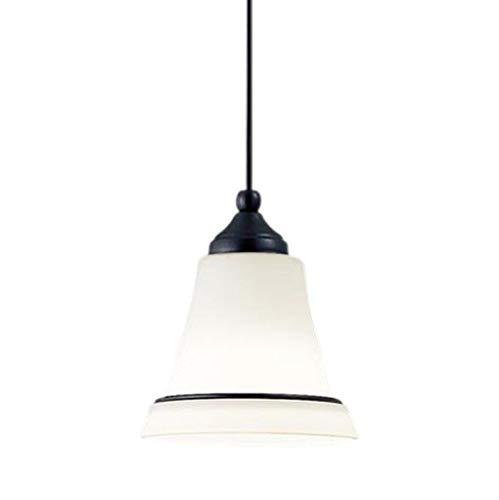 LSEB3130 パナソニック Panasonic LSEB3130 白熱電球40形1灯器具