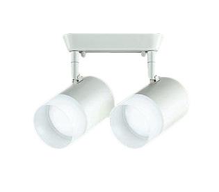 DSL-4706WW 大光電機 照明器具 LEDスポットライト 吹抜け・傾斜天井用 白熱灯100W2灯タイプ 昼白色 フランジタイプ 非調光 DSL-4706WW