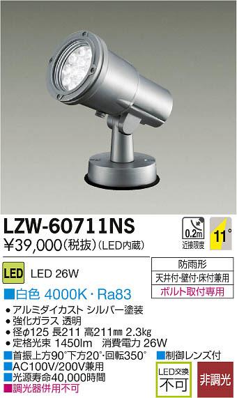 大光電機 施設照明アウトドア LEDハイパワースポットライトLZ2 白色LZW-60711NS【LED照明】