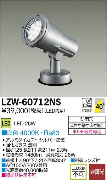 大光電機 施設照明アウトドア LEDハイパワースポットライトLZ2 白色LZW-60712NS【LED照明】