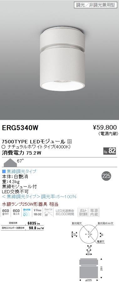 遠藤照明 施設照明LEDシーリングダウンライト HIGH-BAYシリーズ7500タイプ 水銀ランプ250W相当 67° Smart LEDZ 無線調光対応 ナチュラルホワイトERG5340W