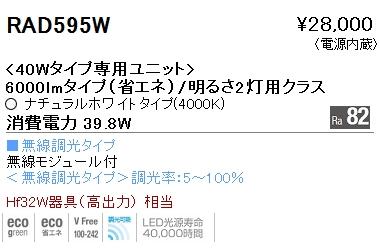遠藤照明 施設照明LEDZ SDシリーズ メンテナンスユニット40Wタイプ 6000lmタイプ/明るさ2灯用クラス一般タイプ Ra82 ナチュラルホワイト 無線調光対応RAD595W