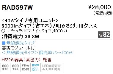 遠藤照明 施設照明LEDZ SDシリーズ メンテナンスユニット40Wタイプ 6000lmタイプ/明るさ2灯用クラス(長1220)一般タイプ Ra82 ナチュラルホワイト 無線調光対応RAD597W