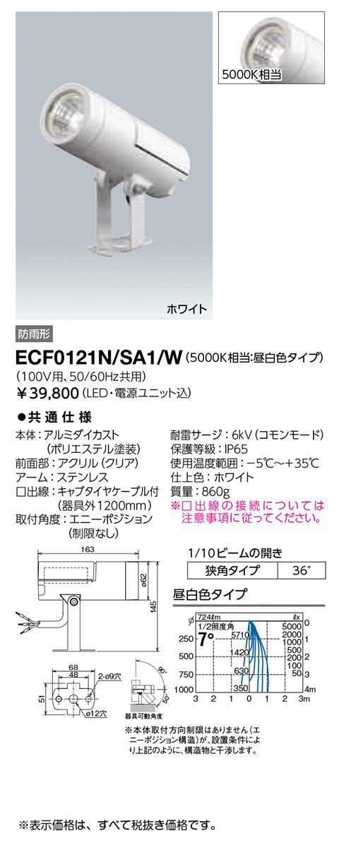 岩崎電気 施設照明LED投光器 レディオック フラッド ニノアウトドアスポットライト 狭角タイプ 昼白色 ホワイトECF0121N/SA1/W