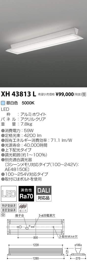 コイズミ照明 施設照明cledy LPシリーズ LEDベースライトシースルー直付タイプ昼白色 FLR40W×2クラス 調光XH43813L