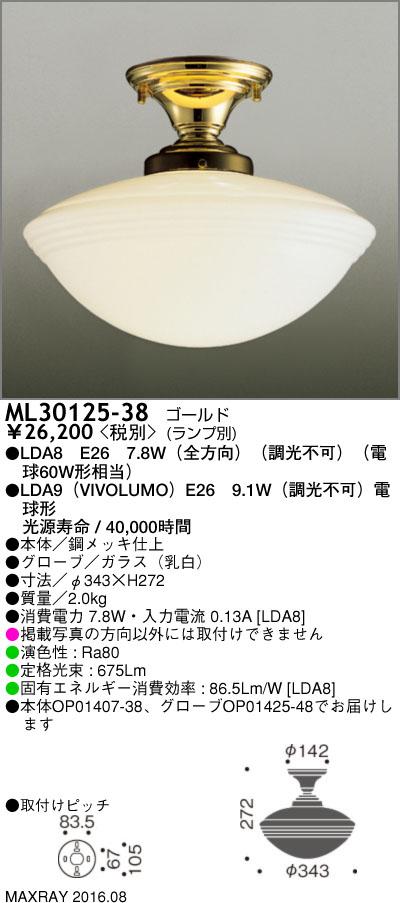 マックスレイ 照明器具装飾照明 NEW YORK LIGHT GALLERYLEDシーリングライト 本体ML30125-38