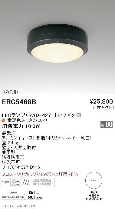 遠藤照明 施設照明LEDアウトドアシーリングライト STYLISH LEDZシリーズ軒下用 フロストクリプトン球40W形×2灯用相当 電球色ERG5468B