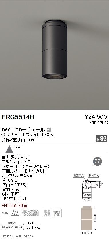遠藤照明 施設照明LED軒下用シーリングダウンライト DUAL-SシリーズD60 FHT24W器具相当広角配光38° 非調光 ナチュラルホワイトERG5514H