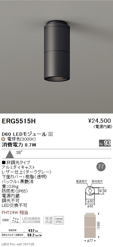 遠藤照明 施設照明LED軒下用シーリングダウンライト DUAL-SシリーズD60 FHT24W器具相当広角配光38° 非調光 電球色ERG5515H