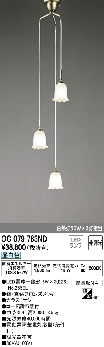 オーデリック 照明器具吹き抜け用LEDシャンデリア 昼白色非調光 白熱灯60W×3灯相当OC079783ND