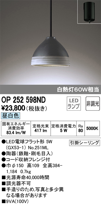 OP252598NDLEDペンダントライト フレンジタイプ 非調光 昼白色 白熱灯60W相当オーデリック 照明器具 吊下げ インテリア照明