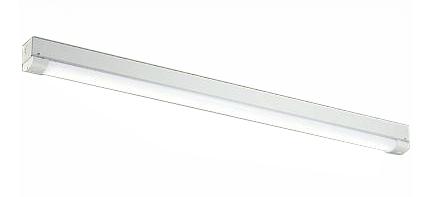 大光電機 照明器具軒下用LEDベースライト 昼白色 非調光FL40W形×1灯相当 2000lmクラスDOL-4954WW