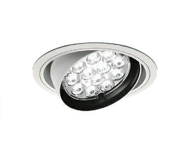 遠藤照明 施設照明LEDユニバーサルダウンライト Rsシリーズ Rs-12CDM-TC70W相当 ナローミドル配光18°非調光 ナチュラルホワイトERD2464W