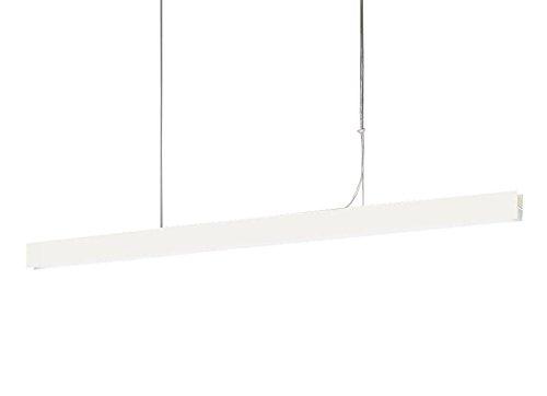 パナソニック Panasonic 照明器具LED建築化照明器具 ラインペンダント 昼白色 美ルックHomeArchi 吊下型 吹き抜け用 拡散 調光 L1200LGB17185LB1