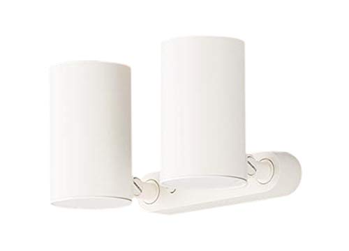 パナソニック Panasonic 照明器具LEDスポットライト 電球色 美ルック 直付タイプ 2灯拡散タイプ 白熱電球60形2灯器具相当LGB84822LE1