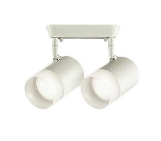 大光電機 照明器具LEDスポットライト 吹抜け・傾斜天井用白熱灯100W2灯タイプ 温白色 フランジタイプ 非調光DSL-4706AW