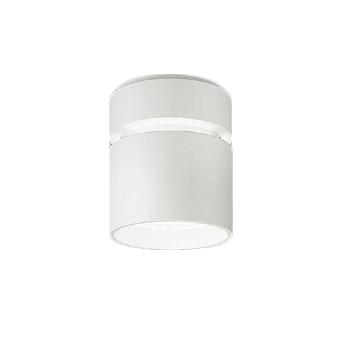 遠藤照明 施設照明LEDシーリングダウンライト Rsシリーズ水銀ランプ400W器具相当 8000タイプ54°超広角配光 昼白色 非調光ERG5520W