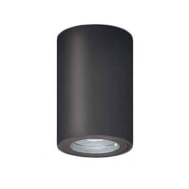 遠藤照明 施設照明LED軒下用シーリングダウンライトRsシリーズ FHT42W器具相当 1200タイプ46°超広角配光 電球色ERG5538H