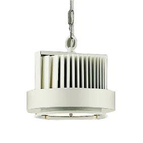 大光電機 施設照明LEDハイパワーペンダントライト温白色 LZ6LZP-60803AW【LED照明】