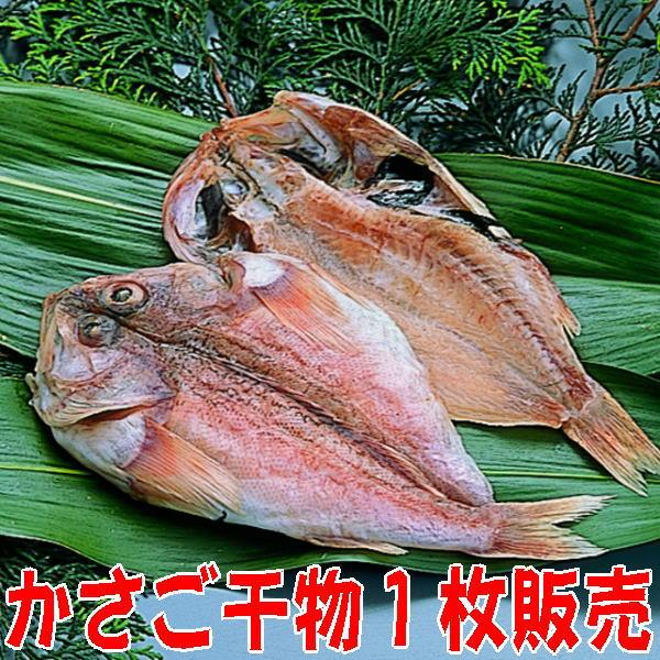 白身魚なのに脂ののりが良い かさご 激安 小 沼津無添加カサゴひもの産地直送 国産 商舗