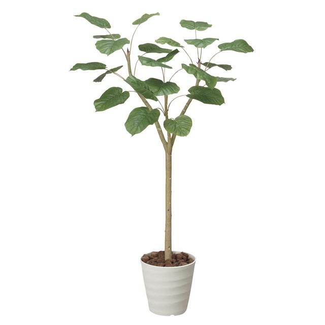 光触媒人口植物 造花 観葉植物 アレンジメント おしゃれ かわいい 新築祝い 開店祝い 光の楽園 172E360-47 誕生日 送料無料 個人様購入可能 ウンベラータ1.8 92327 開催中 年中無休
