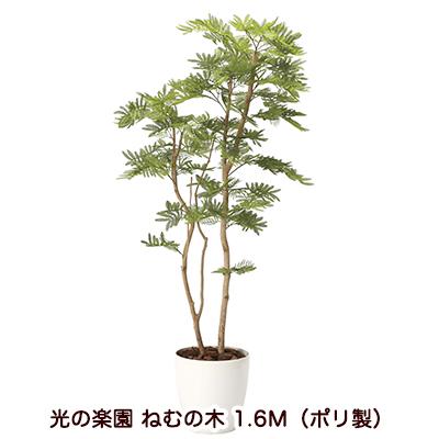 【マラソン 期間限定!ポイント10倍!】【個人様購入可能】●送料無料 光の楽園 [2105A360-26] ねむの木 1.6M(ポリ製) 94160