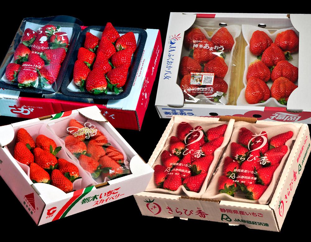 いちご イチゴ いちご福袋 4品種8パック 合計約2kg  (あまおう きらぴ香 スカイベリー いちごさん) ※冷蔵