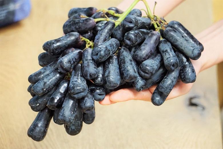 ギフ_包装 皮ごと食べられる種無し黒ぶどう 送料無料限定セール中 スウィートサファイア Sweet Sapphire ブドウ 1バッグ アメリカ産 ※冷蔵 約1kg