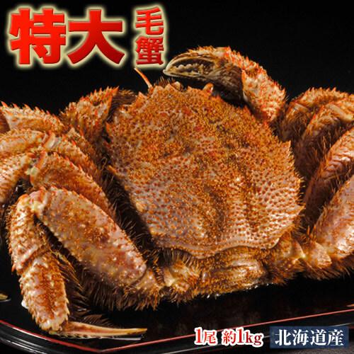 かに カニ 蟹 ケガニ 毛ガニ 毛がに 北海道産 超特大「毛蟹」 堅蟹 1尾×約1kg 送料無料
