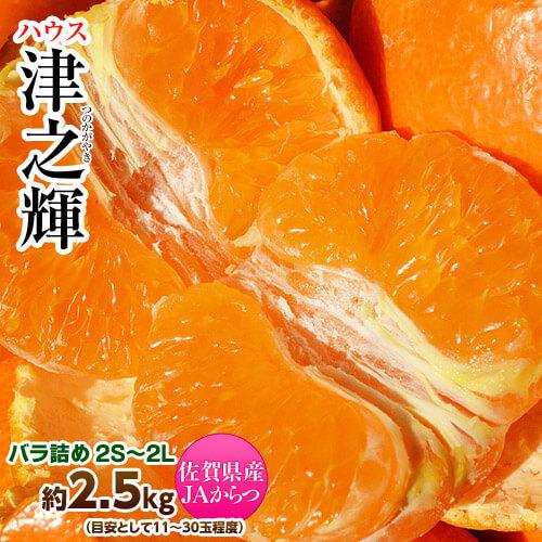 ぷちぷち新食感!新柑橘がついに入荷!津之輝