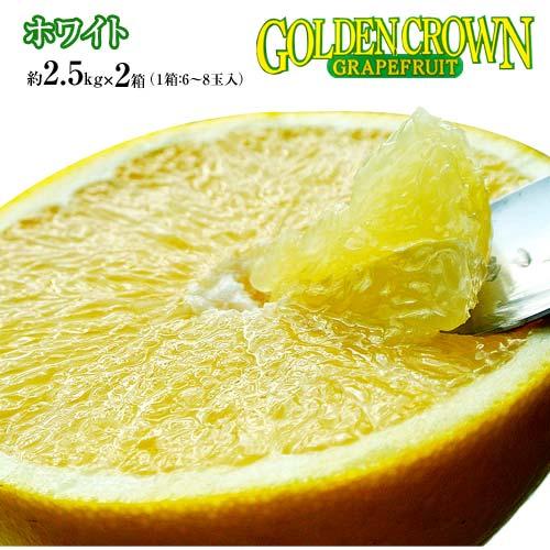 柑橘 フロリダ産 ゴールデンクラウン グレープフルーツ ホワイト(白) 約2.5kg×2箱(1箱:6~8玉) 送料無料