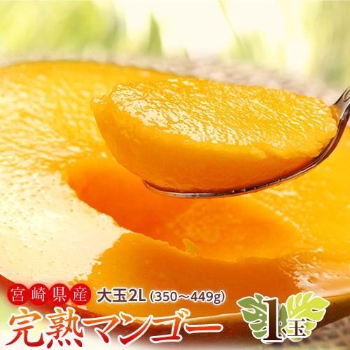 マンゴー 宮崎県産 完熟マンゴー 2L 1玉(350~449g) ※常温