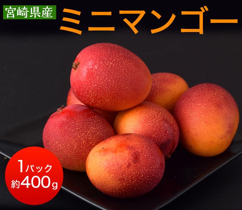 マンゴー 宮崎県産 ミニマンゴー 約400g 目安として3~8玉